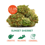 Sunset Sherbet (Sativa Hybrid)