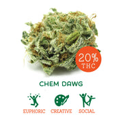 Chem Dawg (Sativa Hybrid)
