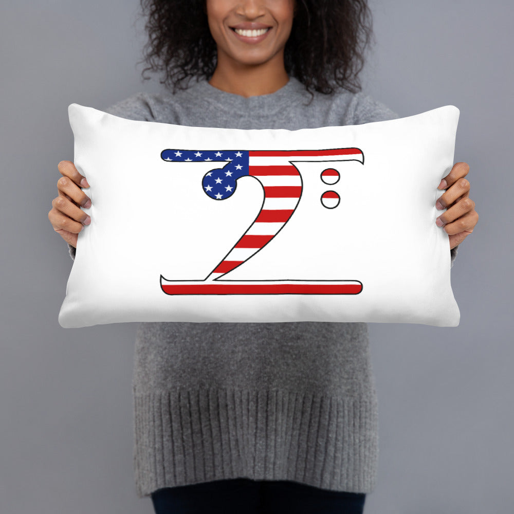 USA LBW Basic Pillow