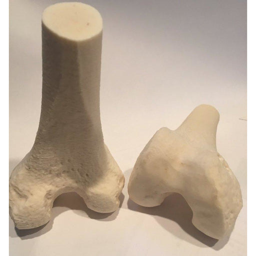 3D Printlife - FibreTuff Medical Grade Bone Filament - Project 3D Printers