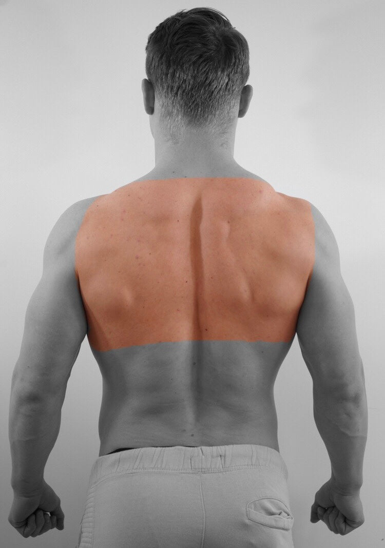 Upper Back + Back Neck (M)