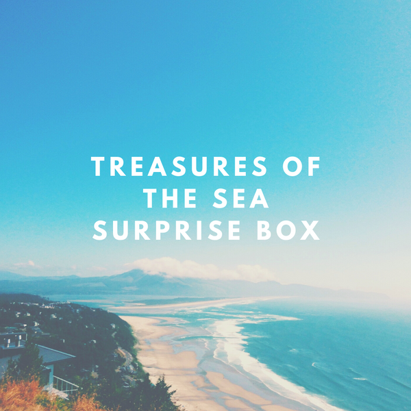 Treasures of the Sea Surprise Box