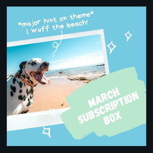 March Subscription Box