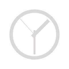 Clock icon in gray