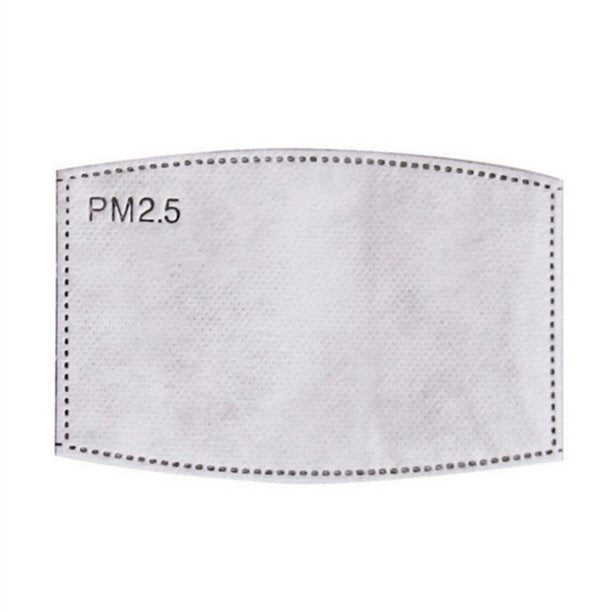 PM 2.5 Carbon Filter (Generic)