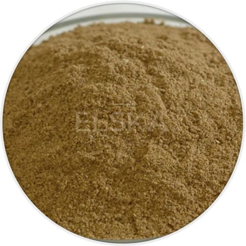 Cumin Seed Powder in Canada/USA at Bulk Wholesale Prices From Elska Naturals