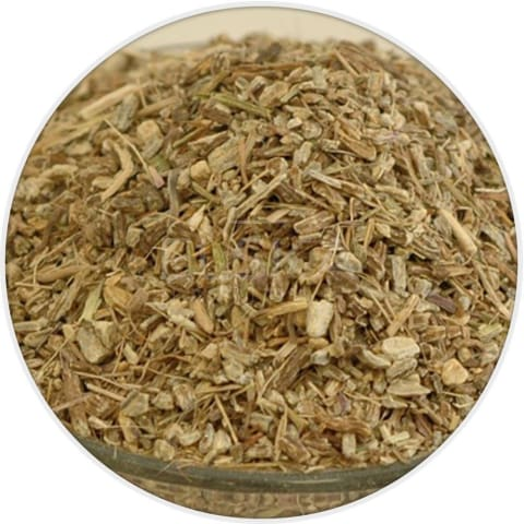 Echinacea Angustifolia Root Cut & Sifted in Canada/USA at Bulk Wholesale Prices From Elska Naturals