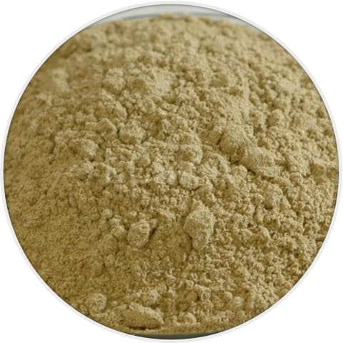 Fennel Seed Powder in Canada/USA at Bulk Wholesale Prices From Elska Naturals