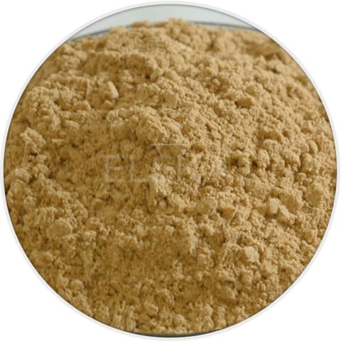 Ginger Root Powder in Canada/USA at Bulk Wholesale Prices From Elska Naturals
