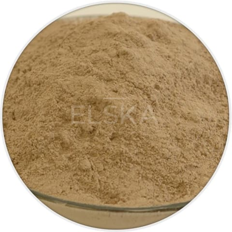 Irish Moss Powder in Canada/USA at Bulk Wholesale Prices From Elska Naturals