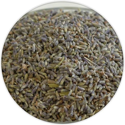 Lavender Flower (Super Blue) in Canada/USA at Bulk Wholesale Prices From Elska Naturals