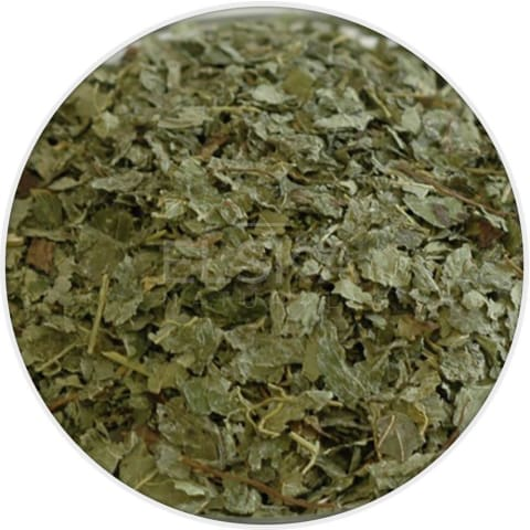 Lemon Balm Cut & Sifted in Canada/USA at Bulk Wholesale Prices From Elska Naturals