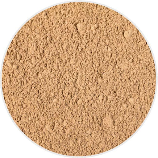 Amla Powder in Canada/USA at Bulk Wholesale Prices