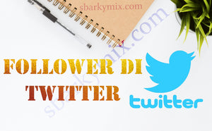 Follower di Twitter