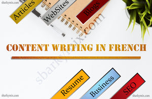 We will write you 500 words in French as a blog or SEO article within 48 hours