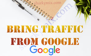 Bring traffic from Google