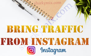 Bring visits from Instagram