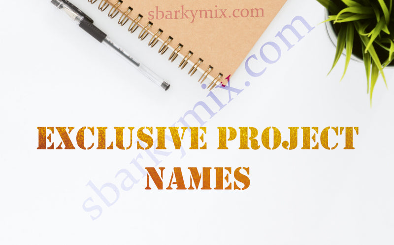 Exclusive project names
