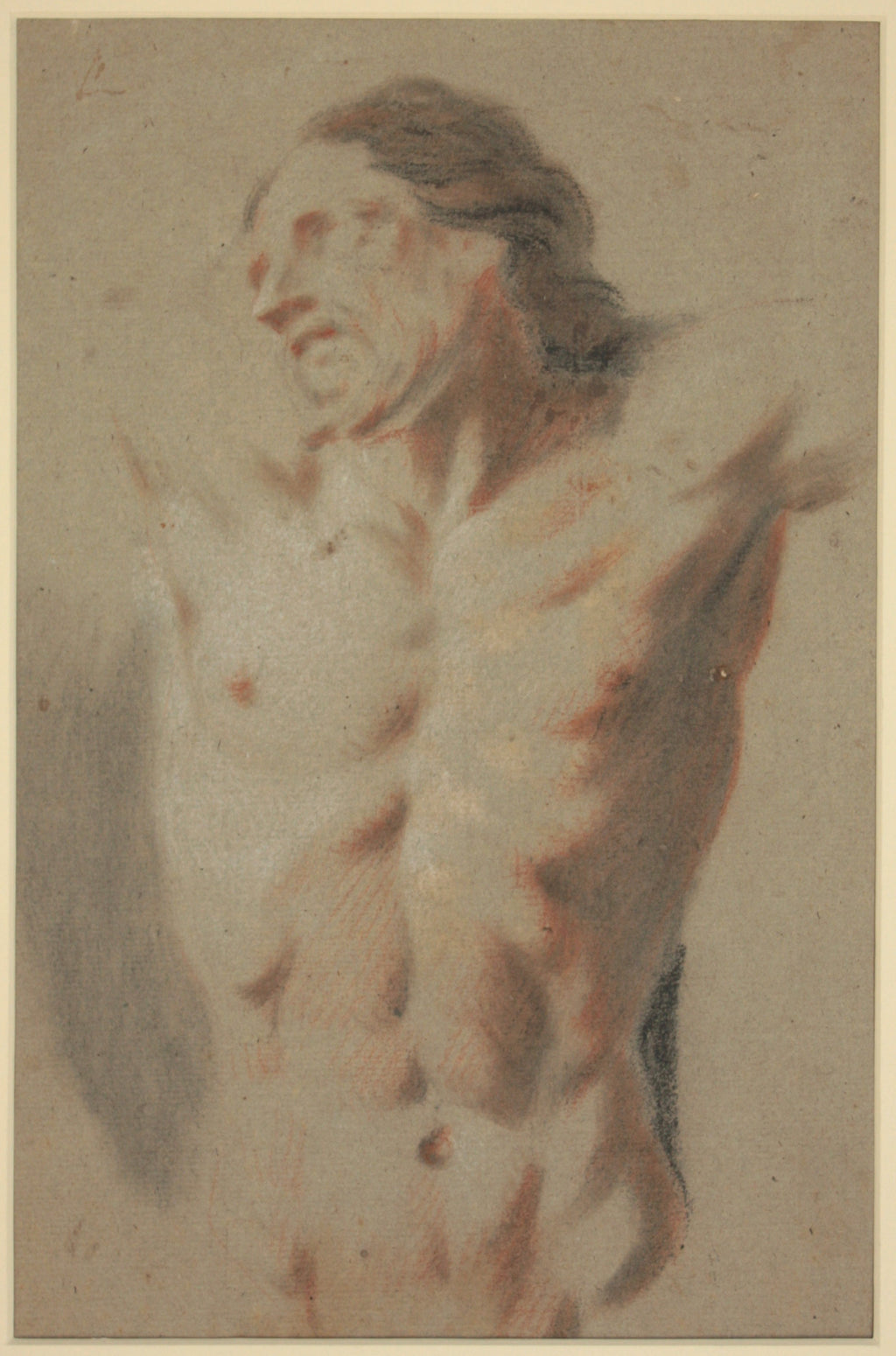 A study of the torso of the crucified Christ