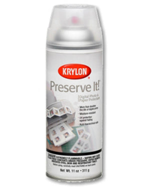 Preserve It Spray Sealer, Matte by Krylon