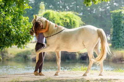 Five Ways to Spoil Your Horse This Valentine's Day