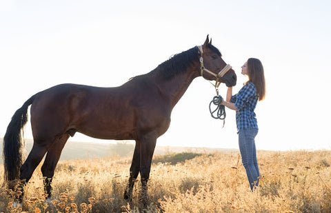 Woman and horse in field