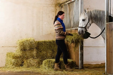A mineral balanced and low-carb, low-fat diet is the primary treatment for horses who have Insulin Resistance and can help with Cushing's disease in addition to supplements.