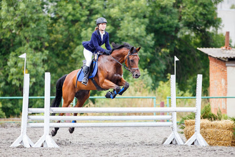 Horse back rider and horse jumping in competition