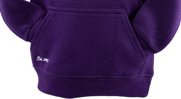 Cambridge University Licensed Unisex Kids Hooded Hoodie Sweatshirt Purple Colour (9-10)