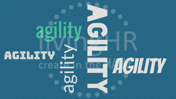&lead Microlearning: Agility Video