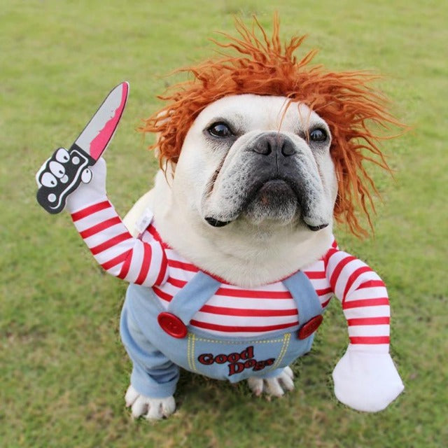 Deadly Doll Halloween Costume For Dogs - Shock-Cart.co.uk
