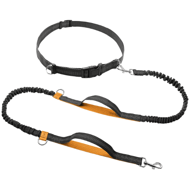 ShockCart  Orange NEOMAX™: Handsfree Bungee Dog Leash
