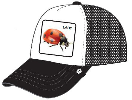 Goorin Bros Lady Bug