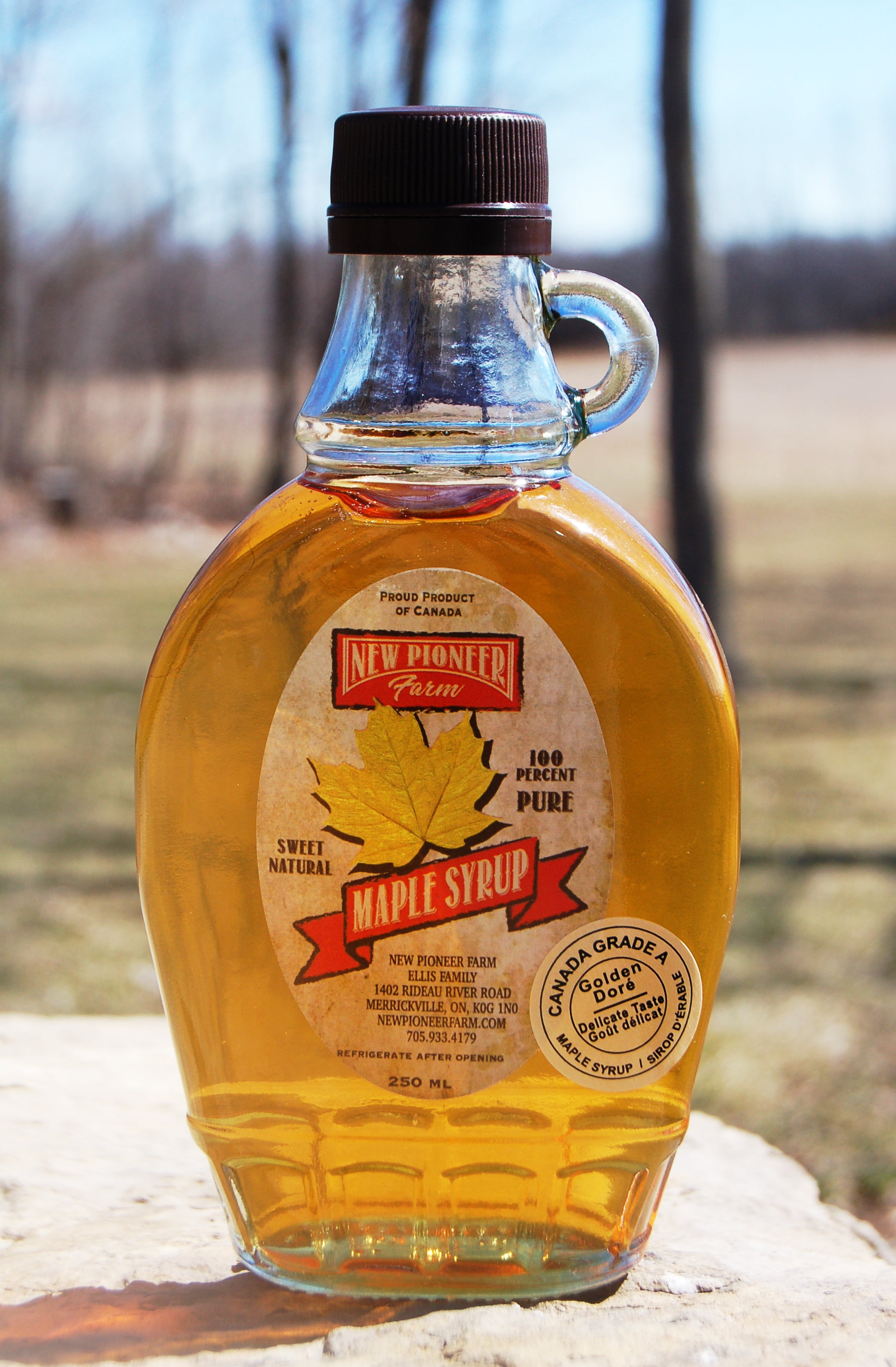 Maple Syrup ~ GOLDEN