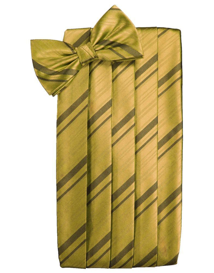New Gold Kids Striped Satin Cummerbund