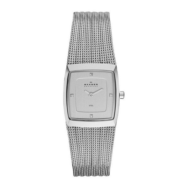 Ladies' Watch Skagen 380XSSS1 (22 mm)