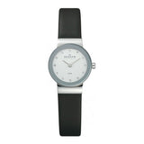 Ladies' Watch Skagen 358XSSLBC (22 mm)