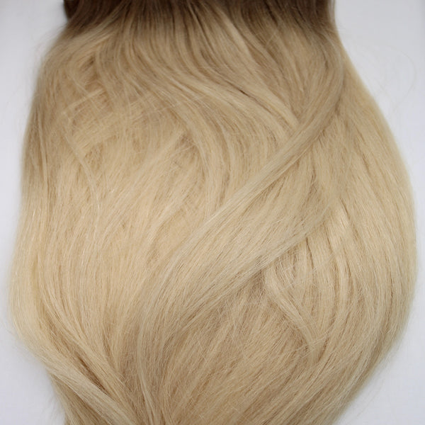 "22"" Hand Tied Wefts - 10N (Lightest Neutral Blonde)"