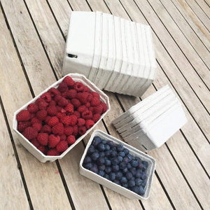 Nutley's fruit punnets fibre biodegradable compostable recycled 250g