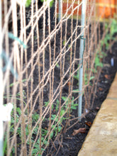 Load image into Gallery viewer, Nutley's Jute Netting 2m x 5m Biodegradable Peas Beans Garden Outdoors