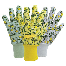 Load image into Gallery viewer, Briers Triple Pack Cotton Ladies Gloves in Sicilian Lemon: Green, Yellow, Lilac