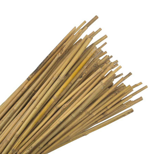 Nutley's 3ft Bamboo Canes Garden Plant Supports