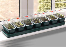 Load image into Gallery viewer, Garland Super 7 Self-Watering Windowsill Seed Propagator: 7 units in one