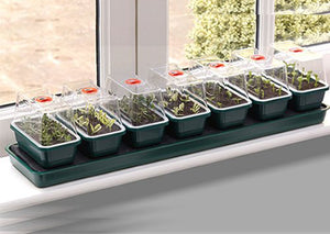 Garland Super 7 Self-Watering Windowsill Seed Propagator: 7 units in one