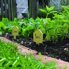 "Load image into Gallery viewer, Haxnicks Bamboo Plant Markers in garden one labelled ""spinach"" and the other ""basil"""