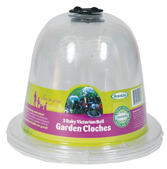 Haxnicks Clear Plastic Baby Bell Jar Cloche with Optional Ground Pegs (Pack of 3)