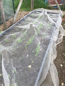 2m wide Insect Netting protect against root fly cabbage white various lengths