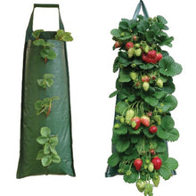 Load image into Gallery viewer, Hanging Strawberry Flower Bag Planter Pouch grow fruit herbs flowers UV treated