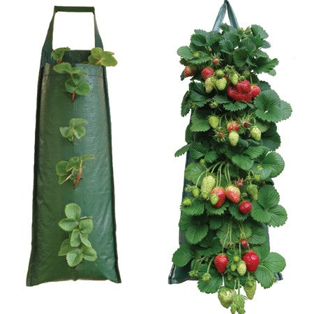 Hanging Strawberry Flower Bag Planter Pouch grow fruit herbs flowers UV treated