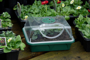 Nutley's Seed Propagator small made in UK shatterproof high vented lid Early Grow